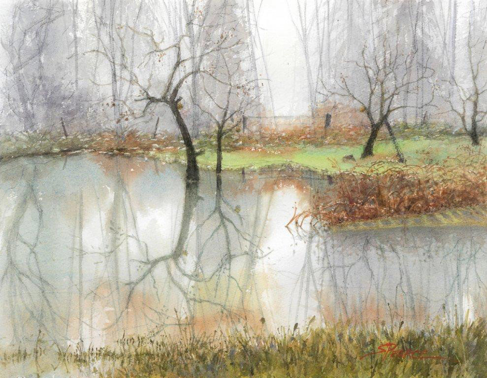 Sandra Pearce, The Unintentional Pond