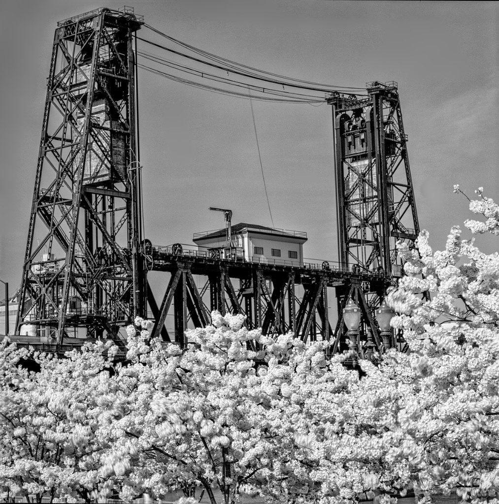 Bruce Clark, Steel Bridge Portland