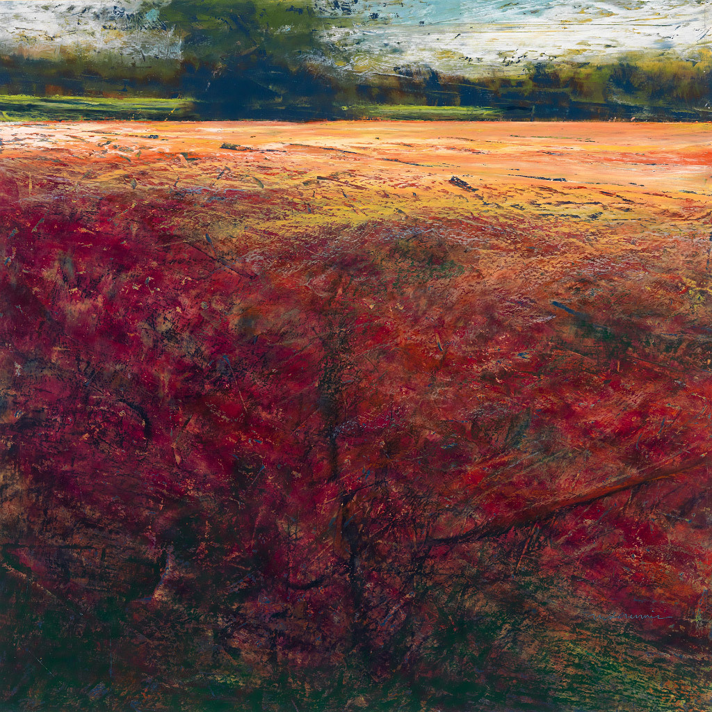 Sun-drenched Field, Mary Dennis