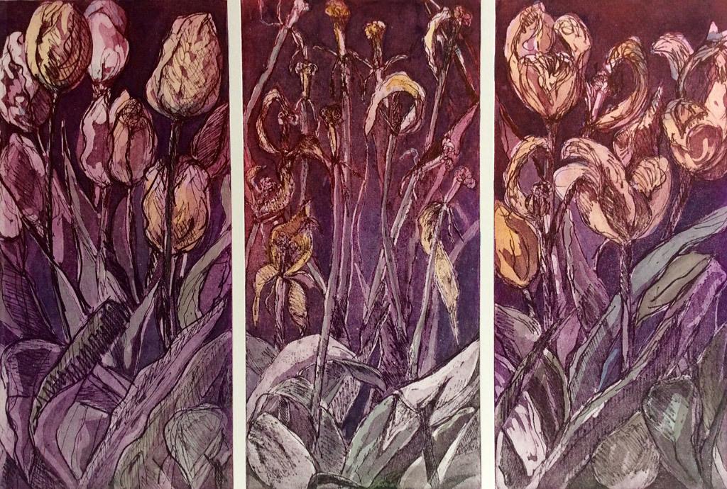 Jani Hoberg, Multnomah Tulips