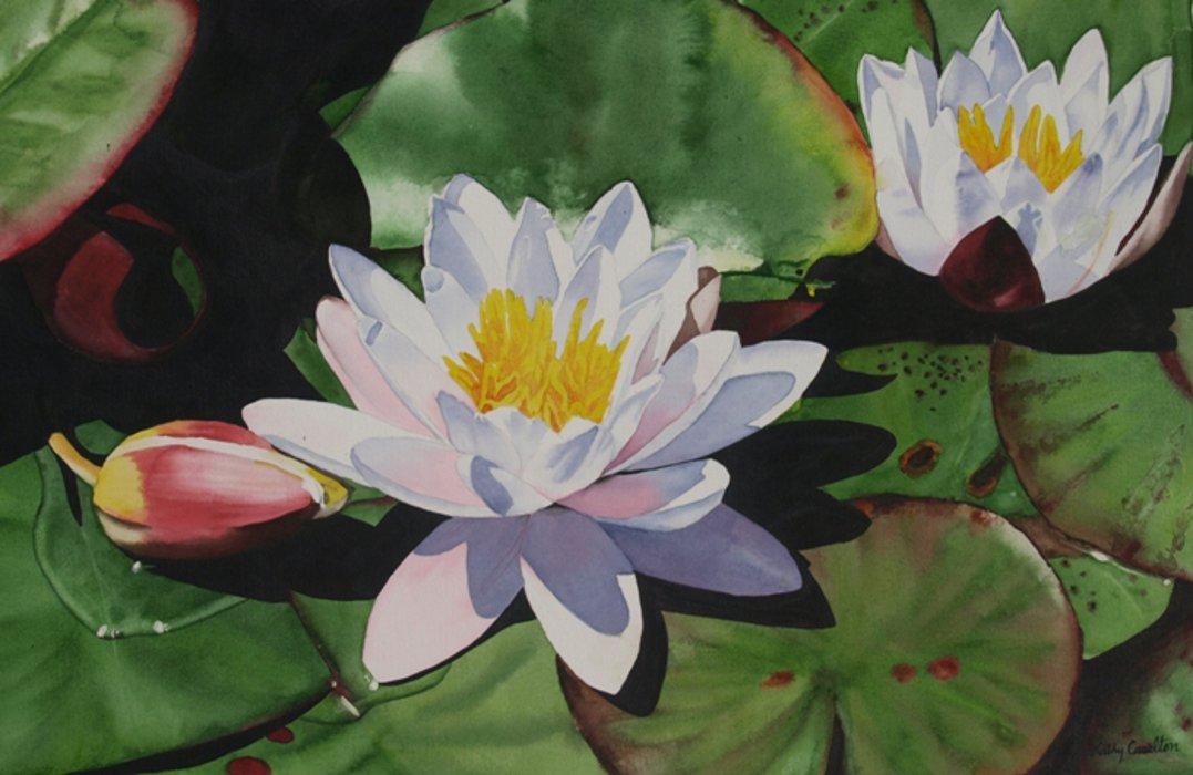 Kathy Caselton, Water Lilies