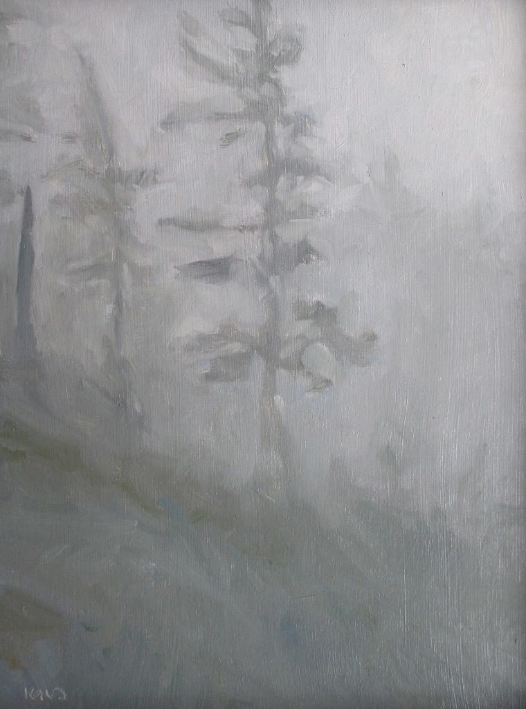 Ken Klos, Forest in the Morning Mist