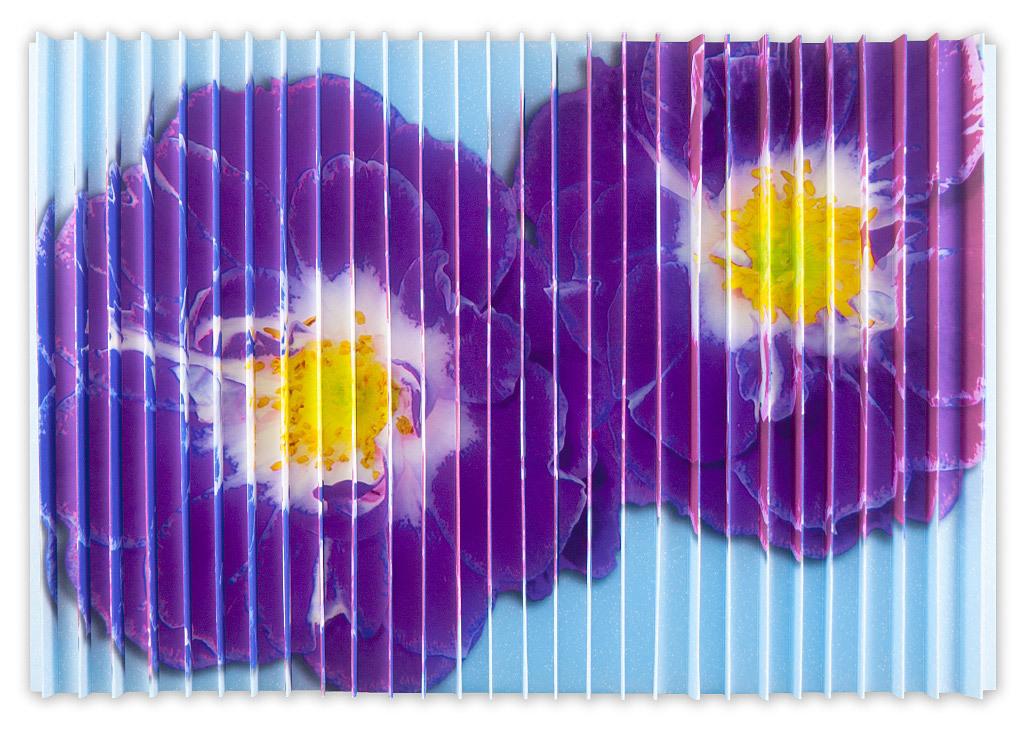Patricia Heimerl - Pop Flowers Lenticular Magnolia 2 M,B,Purple
