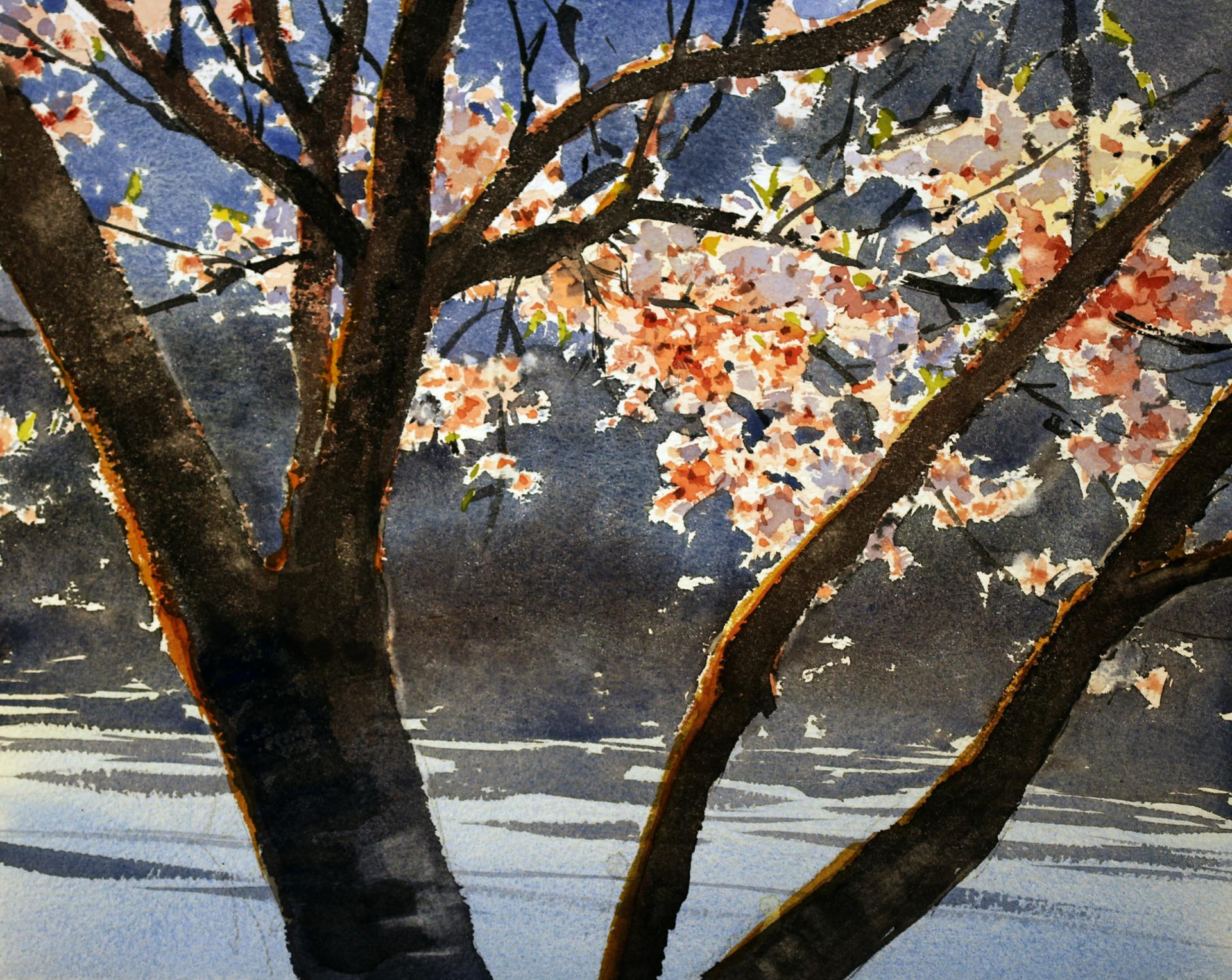 Yong Hong Zhong, Cherry Blossoms by the Waterfront