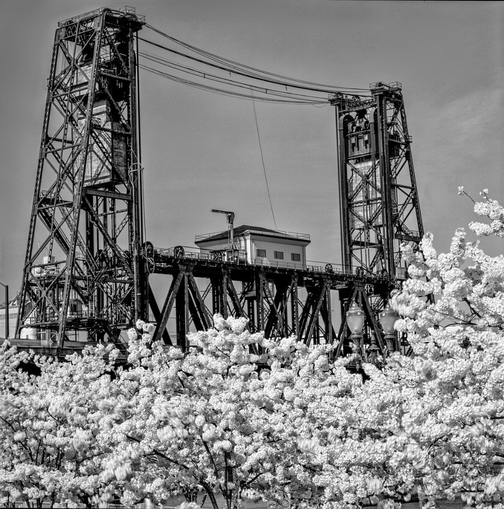 Bruce Clark, Steel Bridge Portland, digital photo