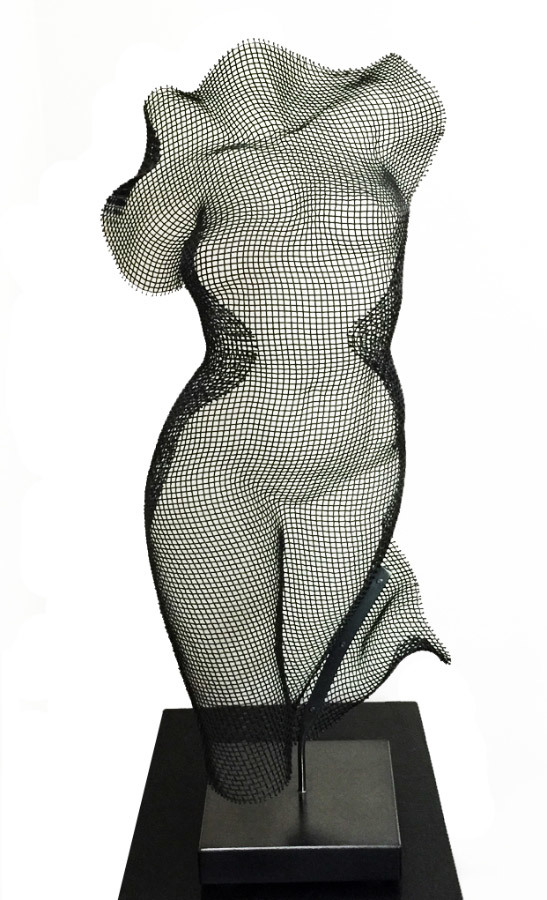 Eric Boyer, Helix, steel wire mesh