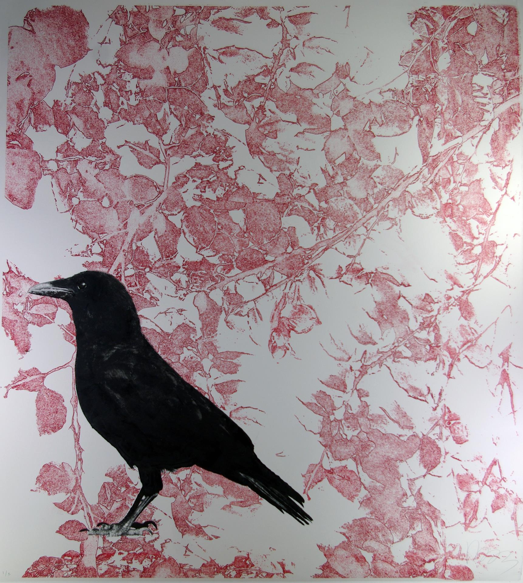 Molly Cliff Hilts, Crow and Beech