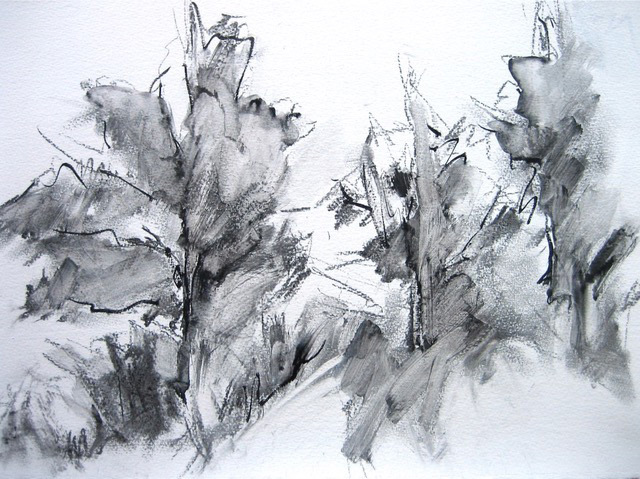 Janet Bland, Pines, ink and charcoal