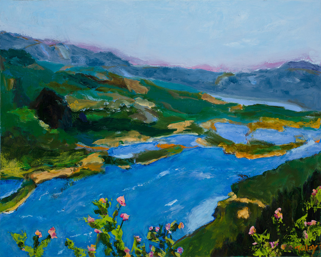 Joyce Tolley, Gorge Overview, oil