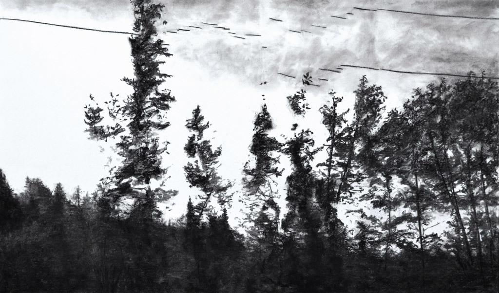 Shelley Chamberlin, Skyline #3, charcoal