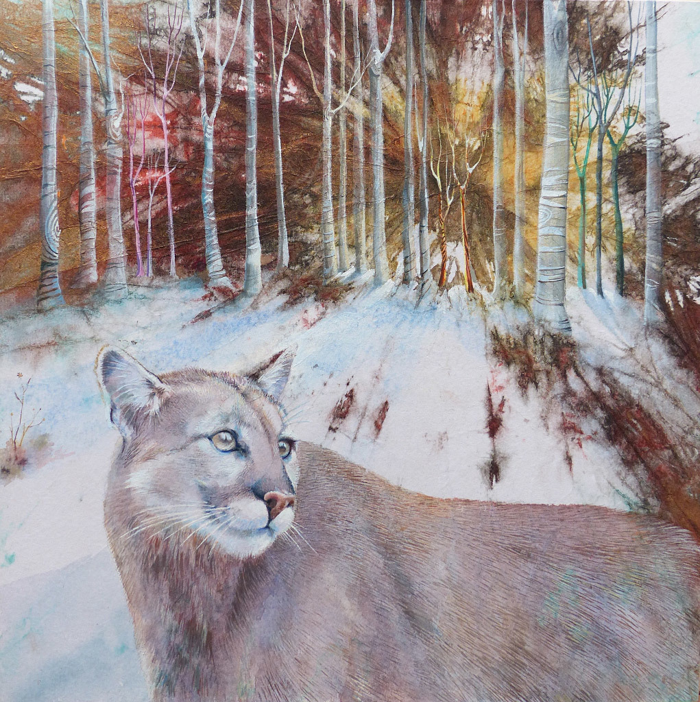 Susan Cowan, Cougar, water color