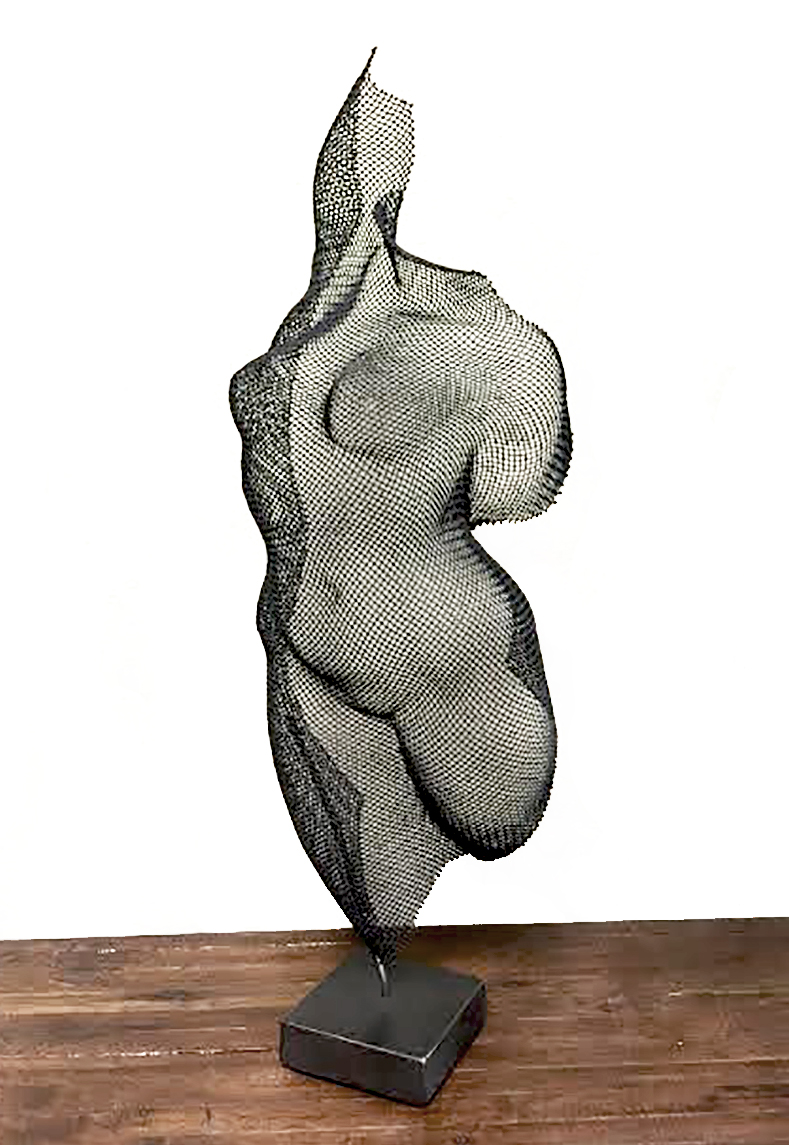 Eric Boyer, Well Spring, steel wire mesh