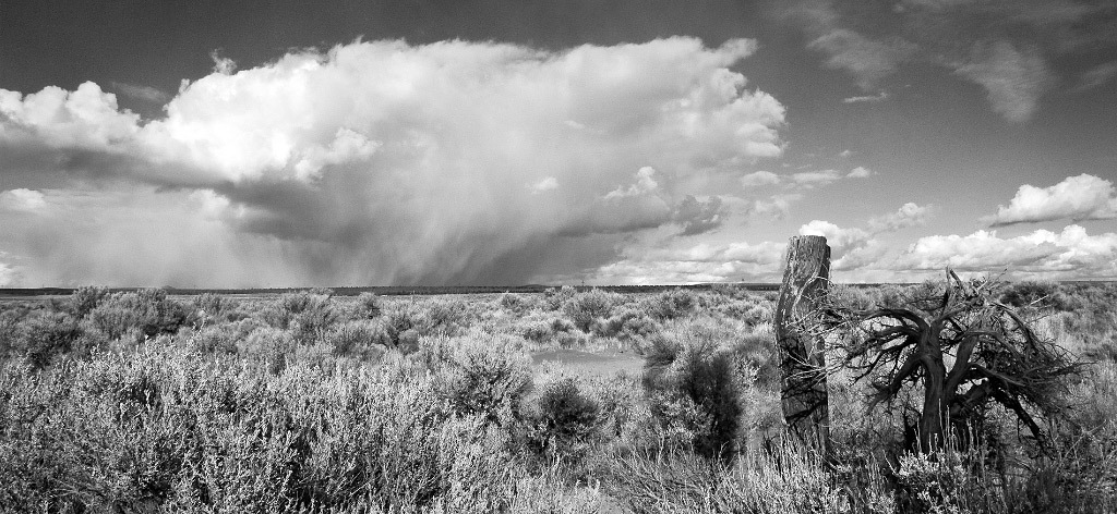Rich Bergeman, Juniper Post and Desert Storm, Fort Rock, Oregon, pigment ink print