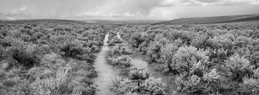 Rich Bergeman, Oregon Trail Wagon Ruts, Flagstaff Hill, Baker Co., Orego, pigment ink print